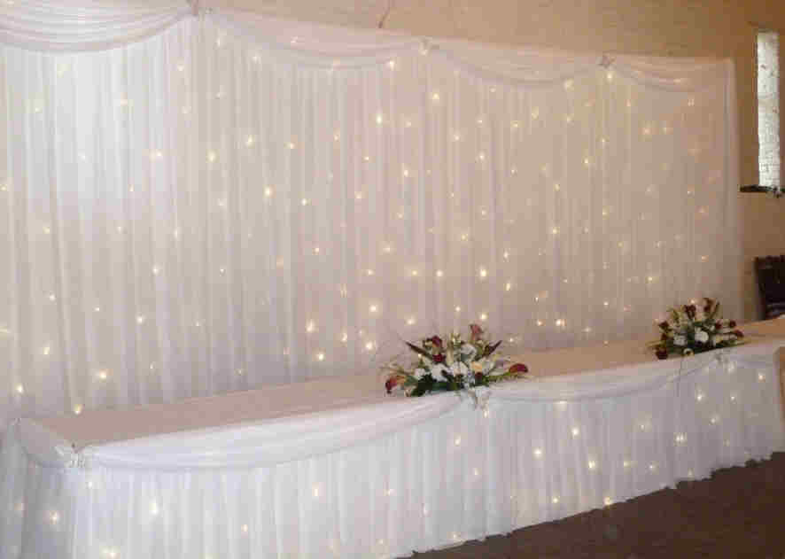 Busy Bee Events Twinkle Light Backdrop